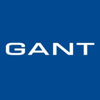 Бензиновый генератор GANTA